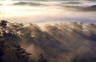 Top 3 Địa điểm săn mây đẹp nhất Đà Lạt